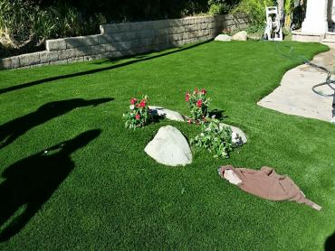 Artificial Grass Photos: Synthetic Lawn Plover, Wisconsin Home And Garden, Front Yard
