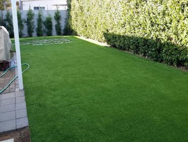 Artificial Grass Photos: Synthetic Turf Gillett, Wisconsin Landscaping Business, Small Backyard Ideas
