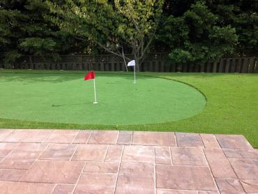 Artificial Grass Photos: Synthetic Turf Supplier Egg Harbor, Wisconsin Gardeners, Backyard Garden Ideas