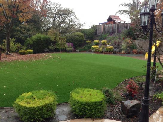 Artificial Grass Photos: Synthetic Turf Supplier Hales Corners, Wisconsin Gardeners, Backyard Designs