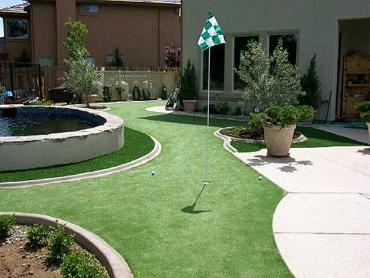 Artificial Grass Photos: Synthetic Turf Supplier Krakow, Wisconsin Outdoor Putting Green, Backyard Landscaping Ideas