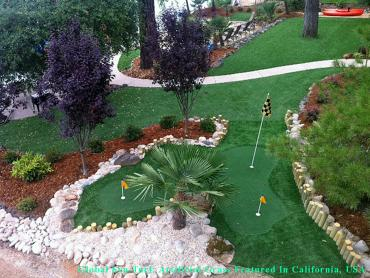 Synthetic Turf Supplier Milwaukee, Wisconsin Rooftop, Backyard Design artificial grass
