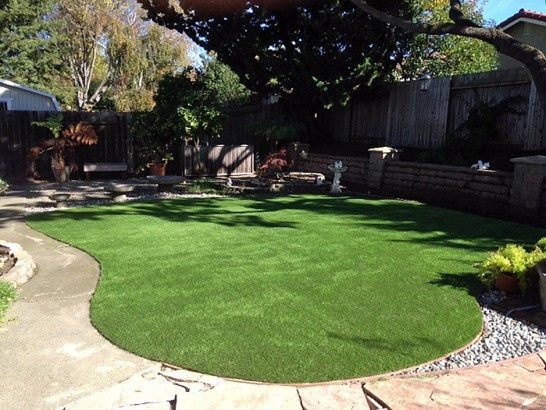 Artificial Grass Photos: Synthetic Turf Supplier Portage, Wisconsin Landscape Design, Beautiful Backyards