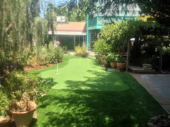 Artificial Grass Photos: Turf Grass Sturtevant, Wisconsin Lawns