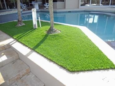 Artificial Grass Photos: Turf Grass Waterford, Wisconsin Lawns, Backyard Makeover