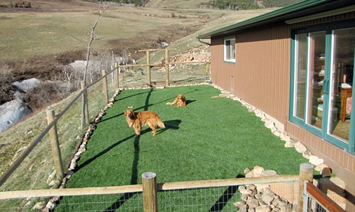 Pet Grass, Artificial Grass For Dogs in Milwaukee